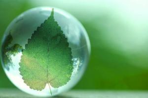 国家发展改革委、国家能源局关于印发促进生物质能供热发展指导意见的通知